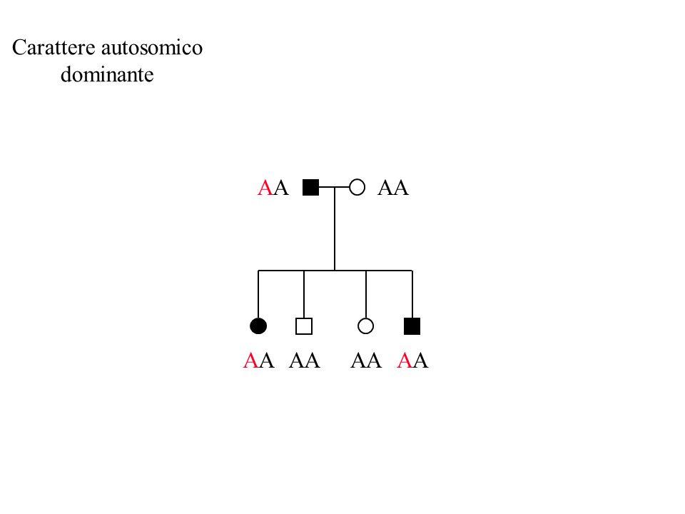 Carattere autosomico dominante AA AA AA AA AA AA