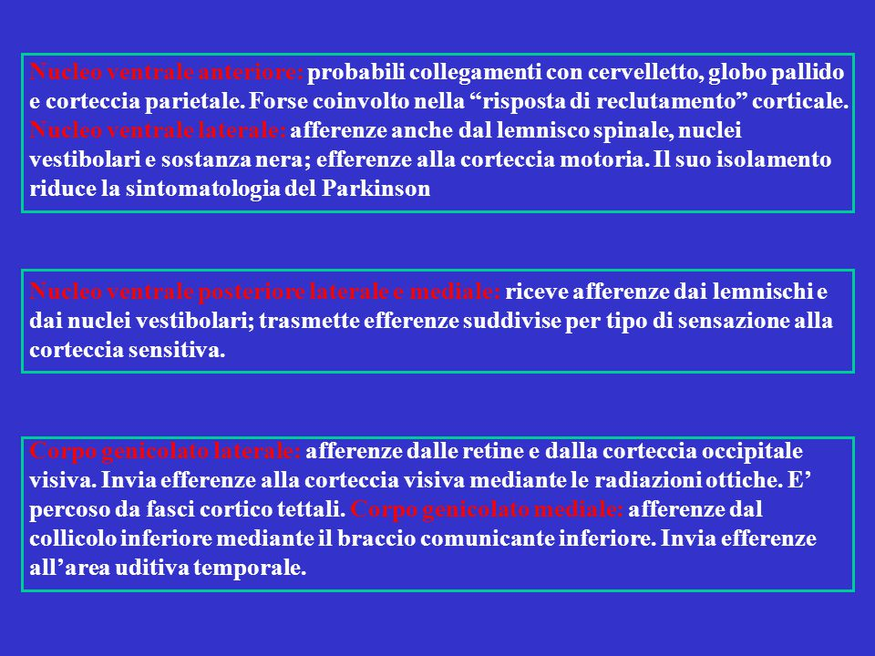 Nucleo ventrale anteriore: probabili collegamenti con cervelletto, globo pallido e corteccia parietale. Forse coinvolto nella risposta di reclutamento corticale. Nucleo ventrale laterale: afferenze anche dal lemnisco spinale, nuclei vestibolari e sostanza nera; efferenze alla corteccia motoria. Il suo isolamento riduce la sintomatologia del Parkinson