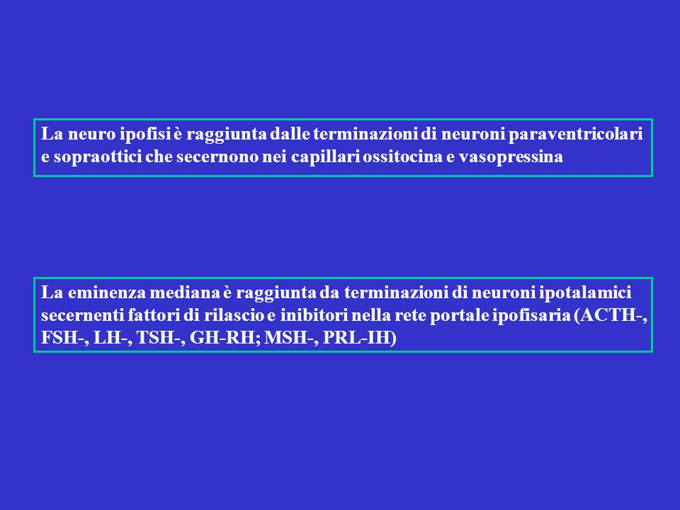 La neuro ipofisi è raggiunta dalle terminazioni di neuroni paraventricolari e sopraottici che secernono nei capillari ossitocina e vasopressina