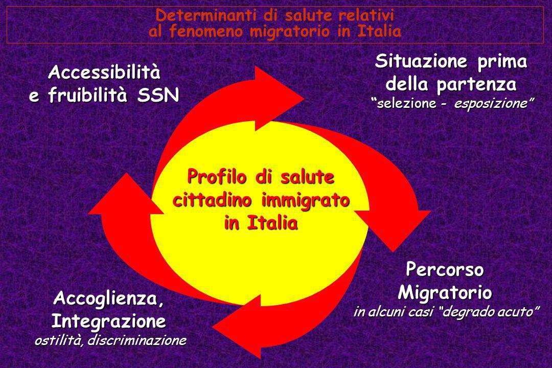 Determinanti di salute relativi al fenomeno migratorio in Italia