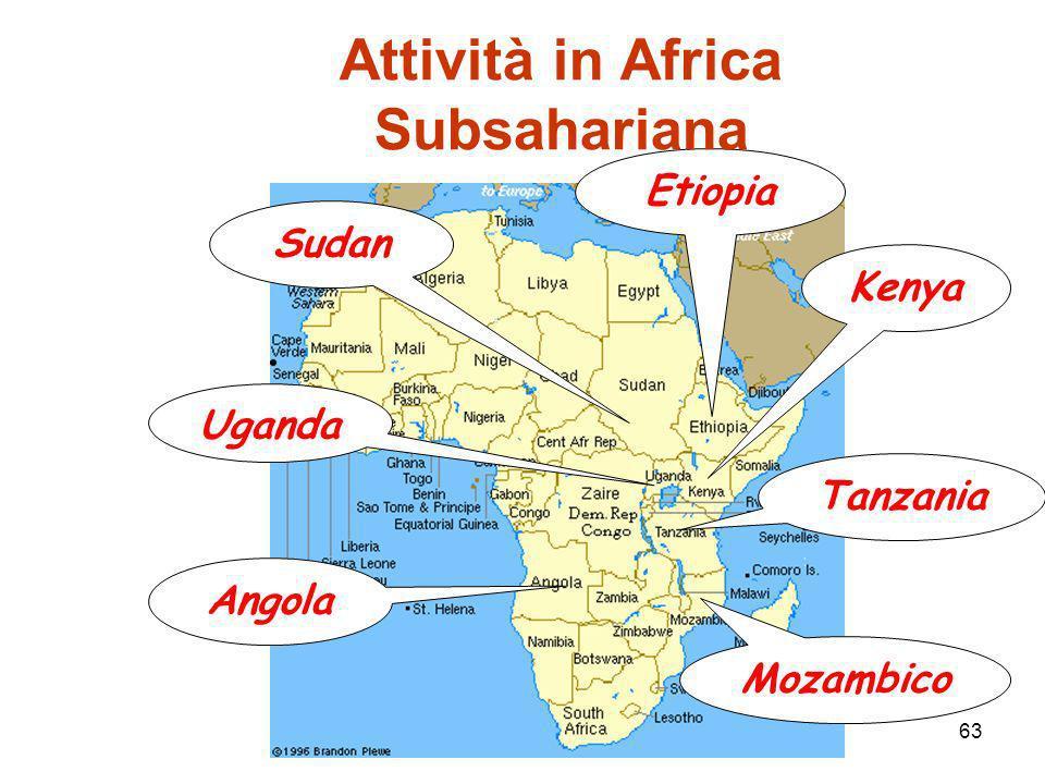 Attività in Africa Subsahariana