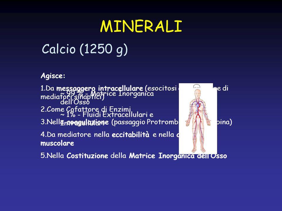 MINERALI Calcio (1250 g) Agisce:
