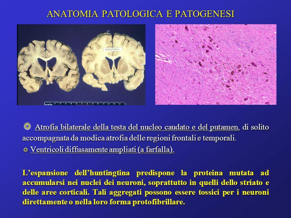 ANATOMIA PATOLOGICA E PATOGENESI