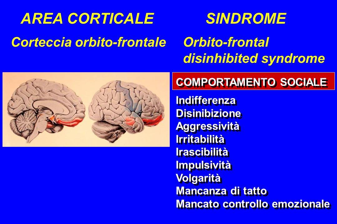 AREA CORTICALE SINDROME Corteccia orbito-frontale Orbito-frontal