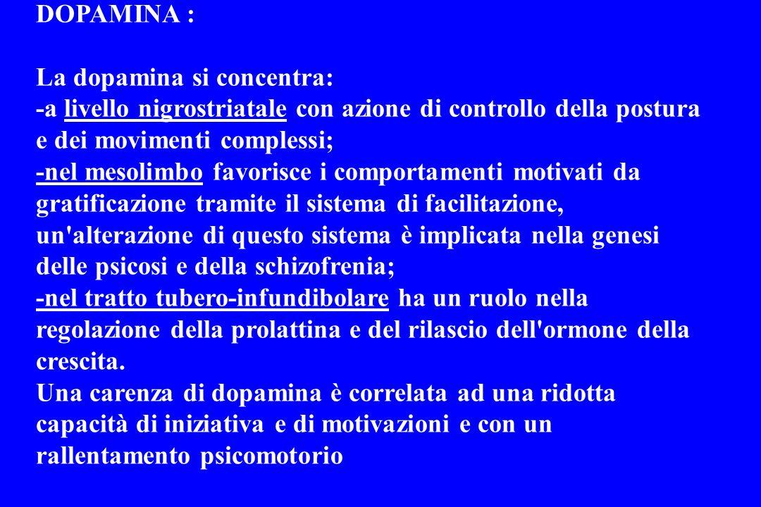 DOPAMINA : La dopamina si concentra: -a livello nigrostriatale con azione di controllo della postura e dei movimenti complessi;