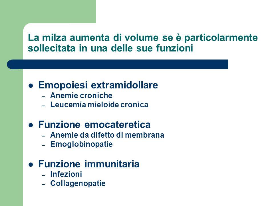Emopoiesi extramidollare
