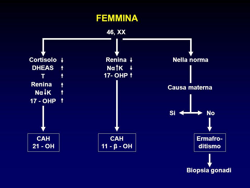 FEMMINA 46, XX Cortisolo Renina Nella norma Causa materna No Si DHEAS