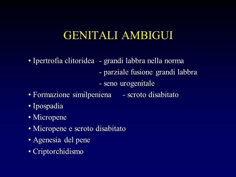 GENITALI AMBIGUI Ipertrofia clitoridea - grandi labbra nella norma