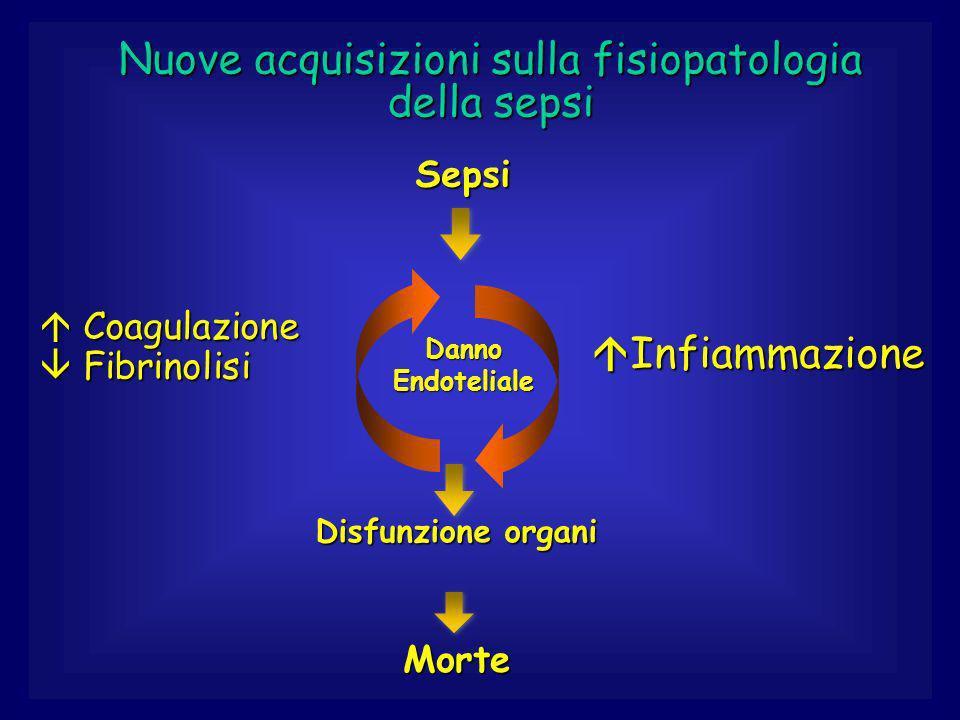 Nuove acquisizioni sulla fisiopatologia della sepsi