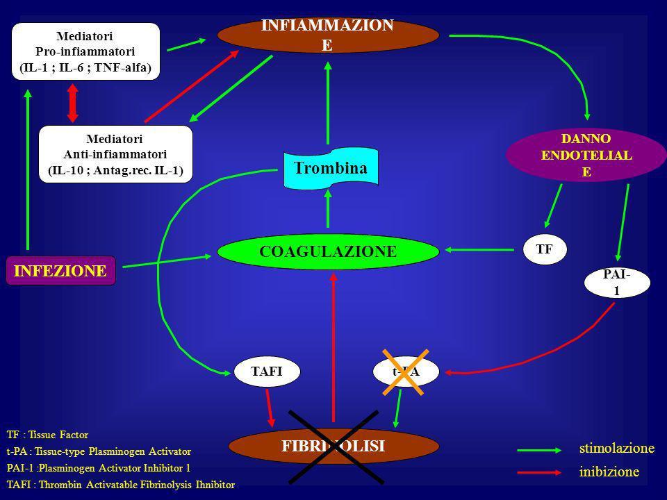 Trombina INFIAMMAZIONE COAGULAZIONE COAGULAZIONE INFEZIONE FIBRINOLISI