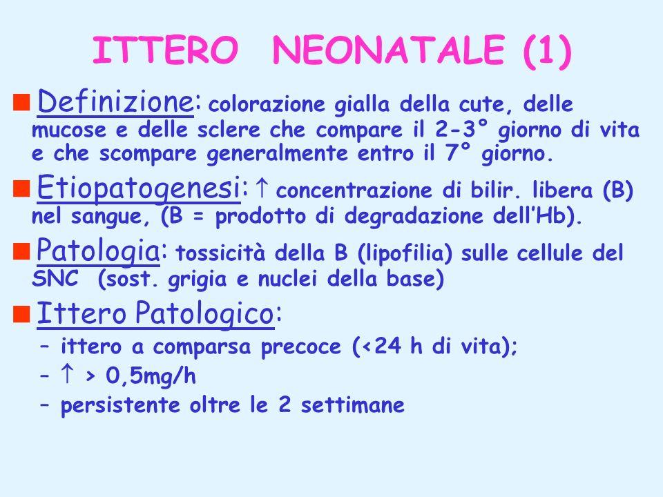 ITTERO NEONATALE (1)