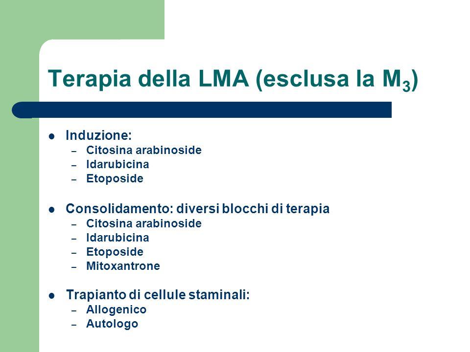 Terapia della LMA (esclusa la M3)