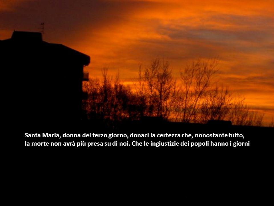 Santa Maria, donna del terzo giorno, donaci la certezza che, nonostante tutto,