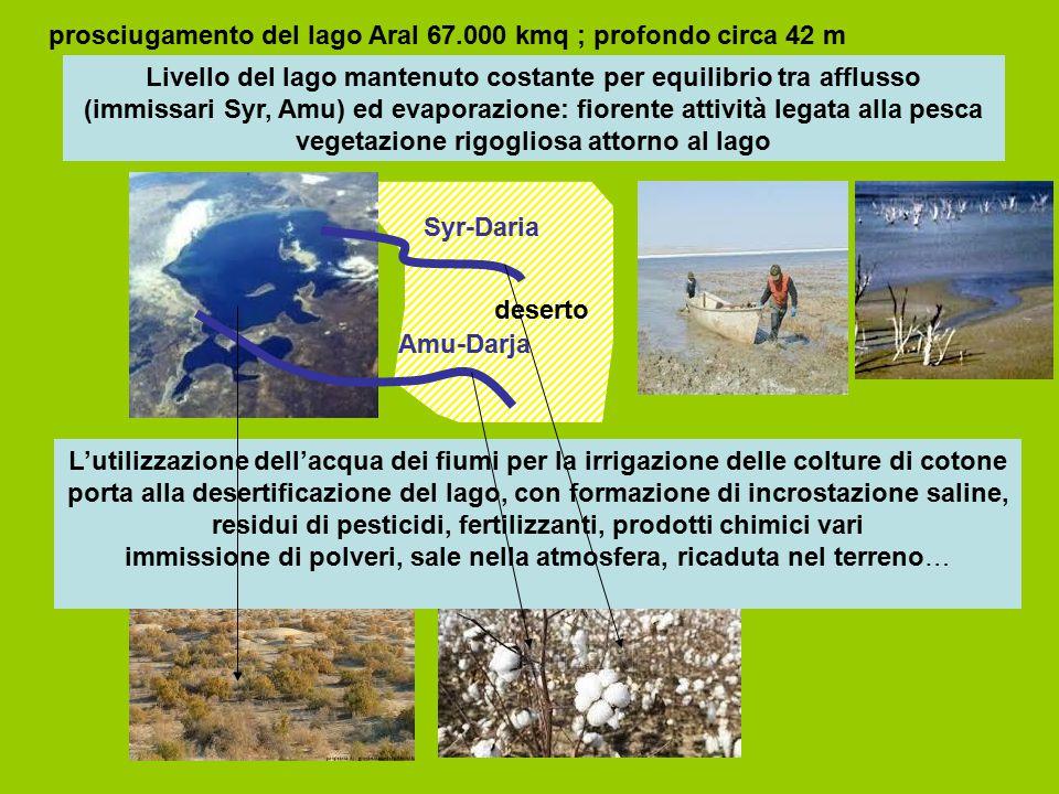prosciugamento del lago Aral 67.000 kmq ; profondo circa 42 m