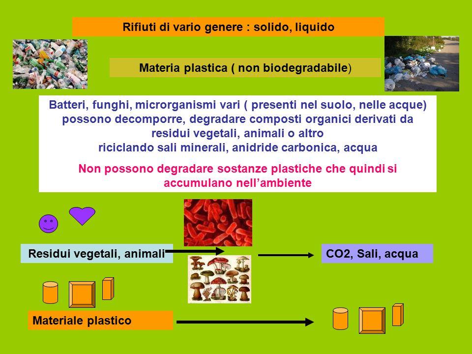 Rifiuti di vario genere : solido, liquido Residui vegetali, animali