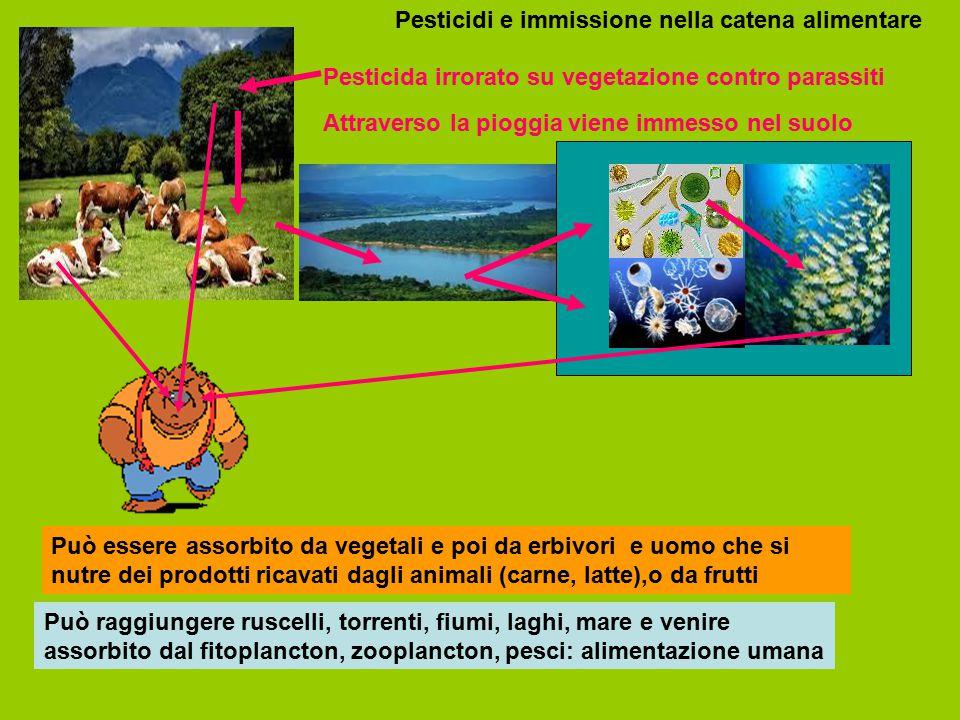 Pesticidi e immissione nella catena alimentare
