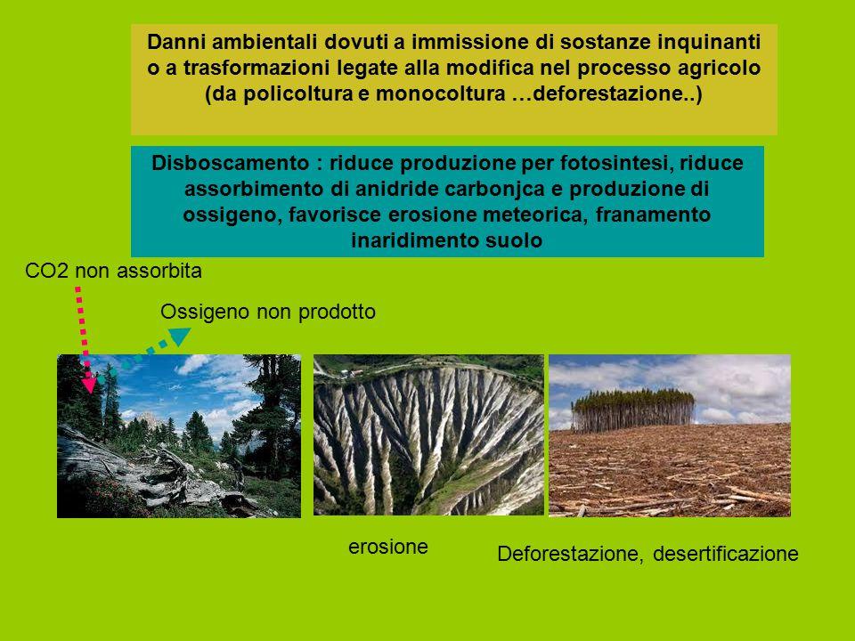Danni ambientali dovuti a immissione di sostanze inquinanti o a trasformazioni legate alla modifica nel processo agricolo (da policoltura e monocoltura …deforestazione..)