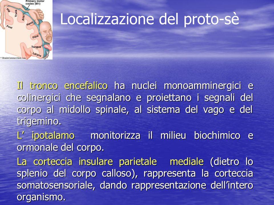 Localizzazione del proto-sè