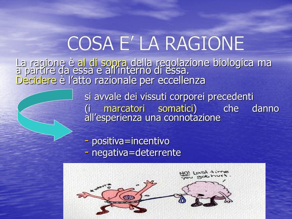 COSA E' LA RAGIONE La ragione è al di sopra della regolazione biologica ma a partire da essa e all'interno di essa.