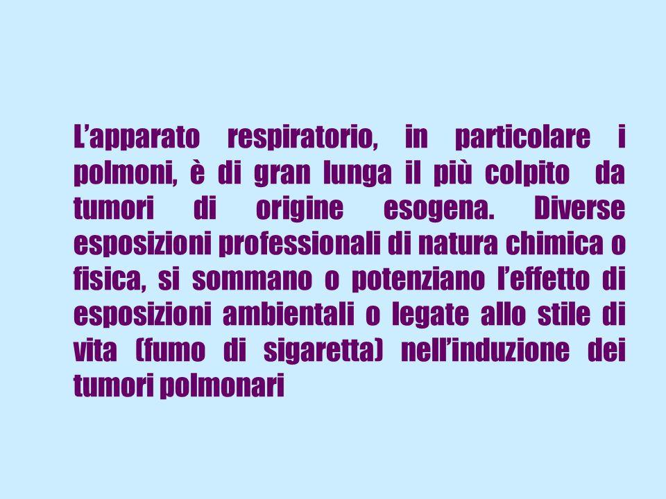 L'apparato respiratorio, in particolare i polmoni, è di gran lunga il più colpito da tumori di origine esogena.