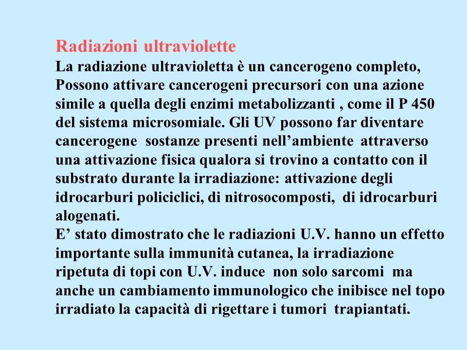 Radiazioni ultraviolette La radiazione ultravioletta è un cancerogeno completo, Possono attivare cancerogeni precursori con una azione simile a quella degli enzimi metabolizzanti , come il P 450 del sistema microsomiale.