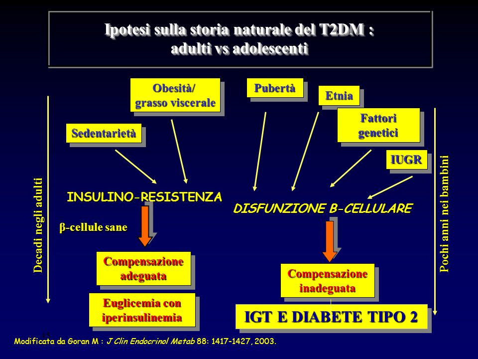 Ipotesi sulla storia naturale del T2DM : adulti vs adolescenti