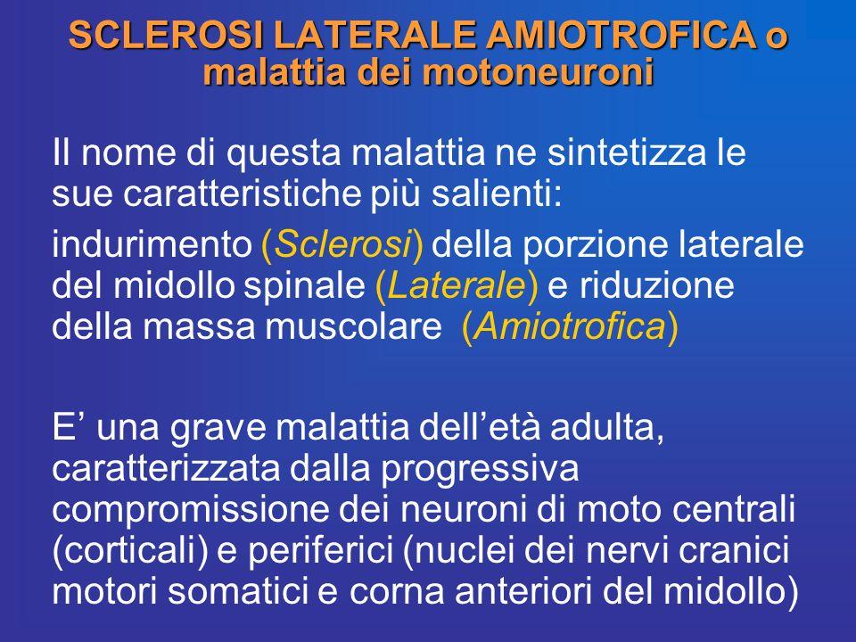 SCLEROSI LATERALE AMIOTROFICA o malattia dei motoneuroni