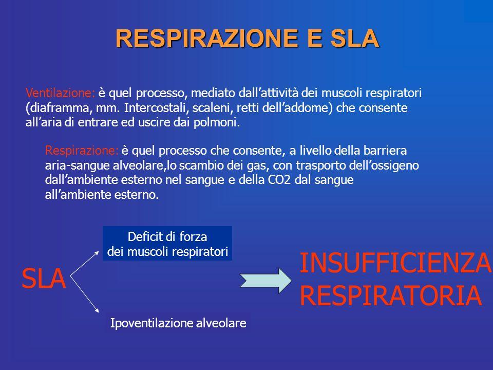 dei muscoli respiratori