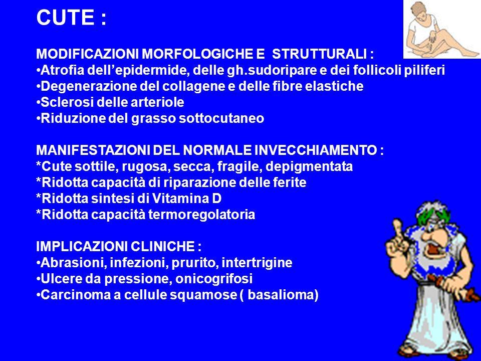 CUTE : MODIFICAZIONI MORFOLOGICHE E STRUTTURALI :