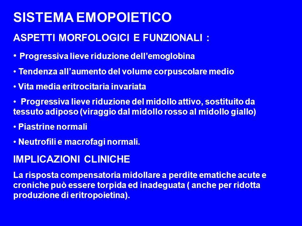 SISTEMA EMOPOIETICO ASPETTI MORFOLOGICI E FUNZIONALI :