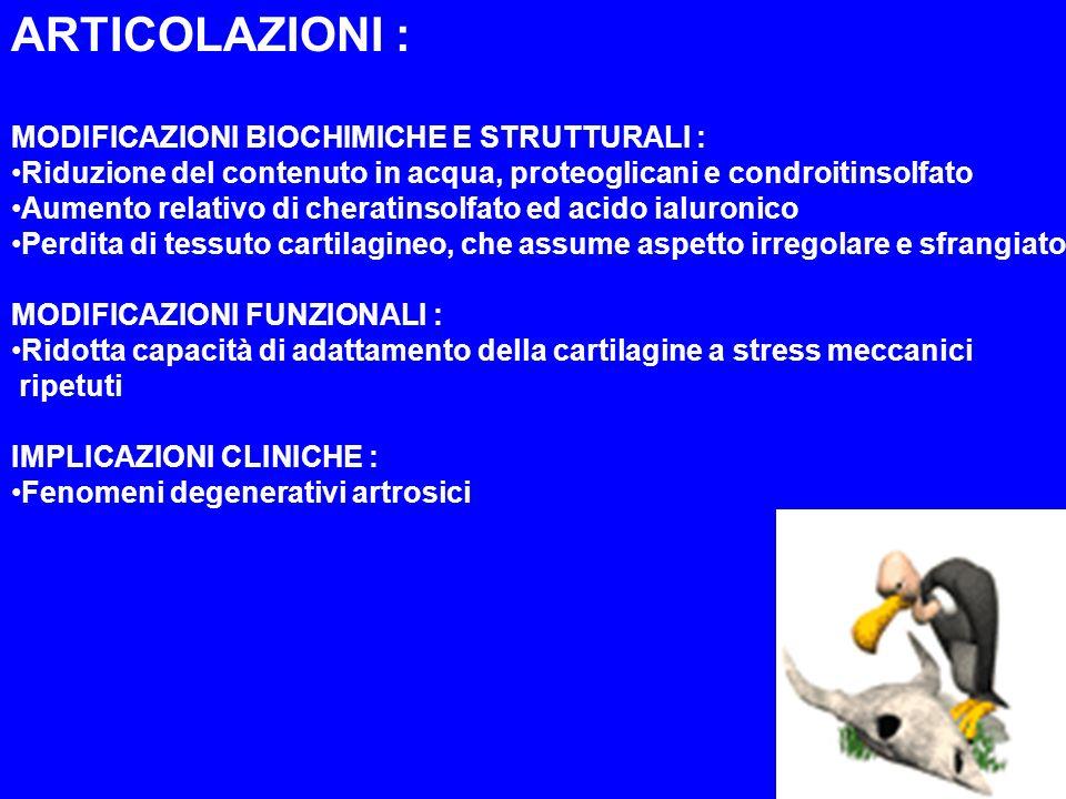 ARTICOLAZIONI : MODIFICAZIONI BIOCHIMICHE E STRUTTURALI :