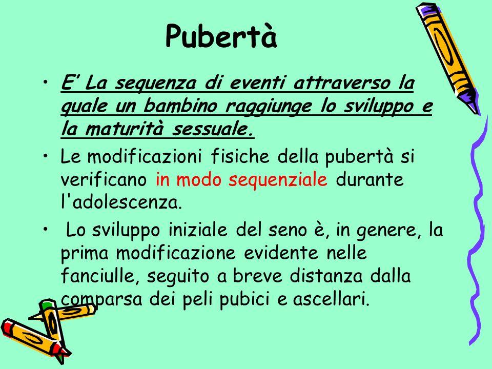 Pubertà E' La sequenza di eventi attraverso la quale un bambino raggiunge lo sviluppo e la maturità sessuale.