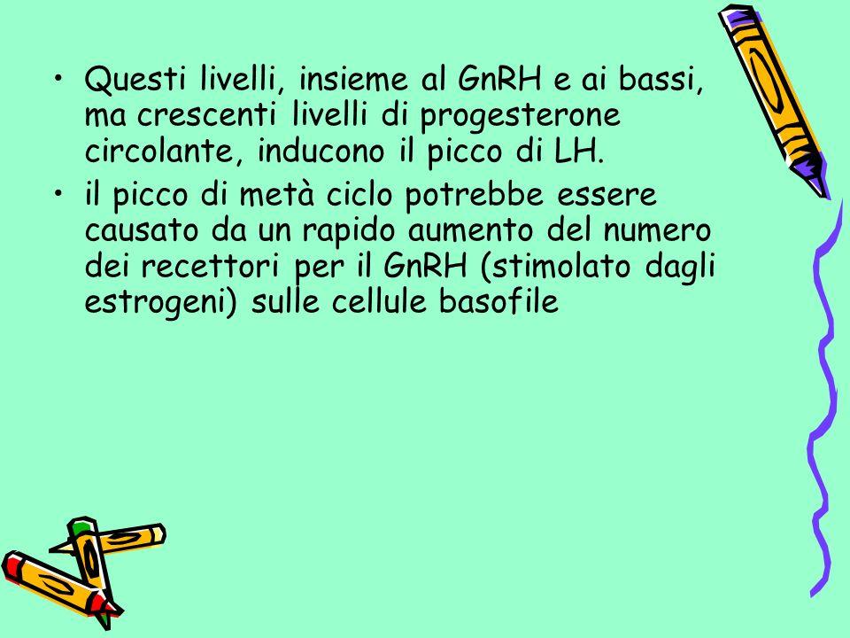 Questi livelli, insieme al GnRH e ai bassi, ma crescenti livelli di progesterone circolante, inducono il picco di LH.