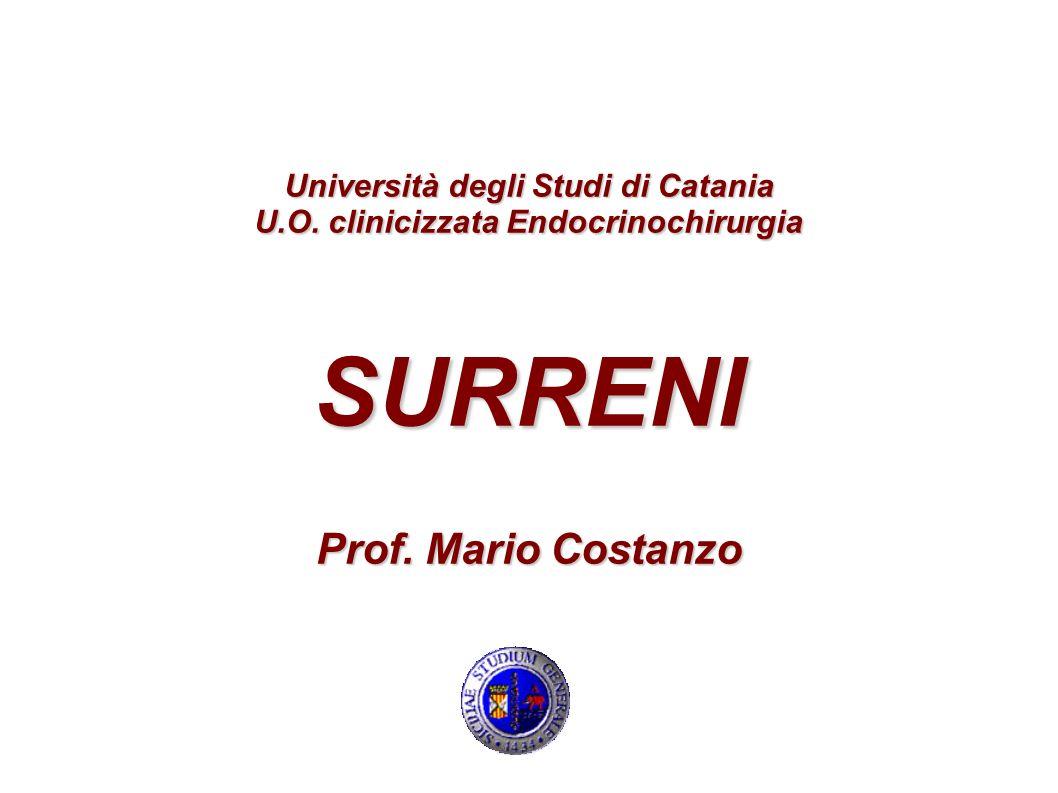 Università degli Studi di Catania U. O