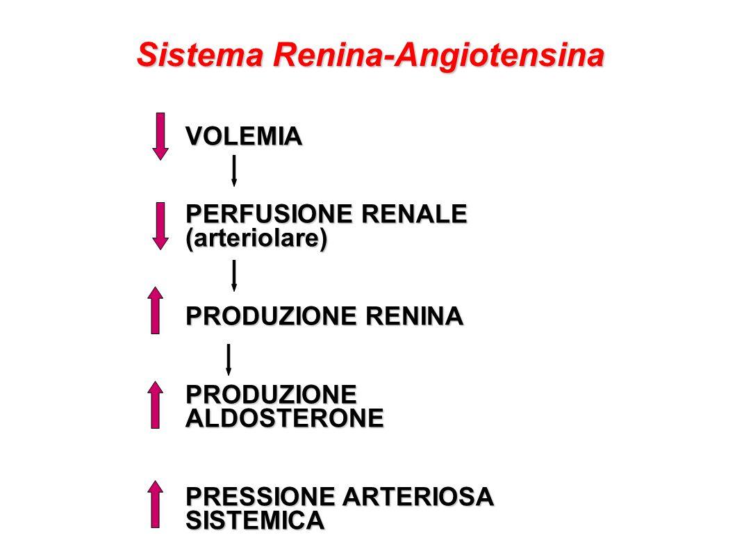 Sistema Renina-Angiotensina