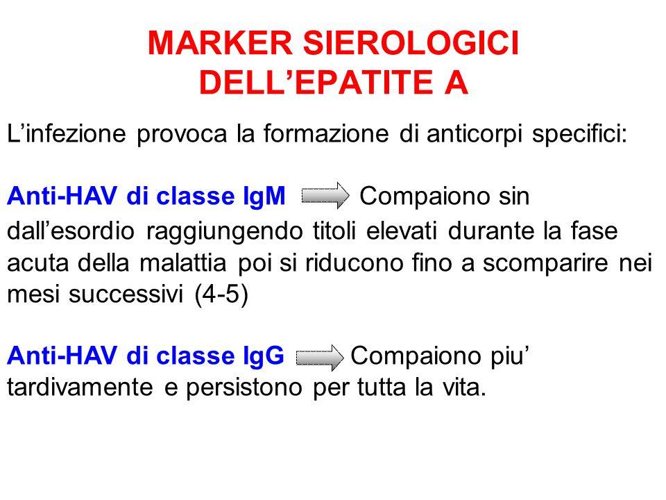 MARKER SIEROLOGICI DELL'EPATITE A