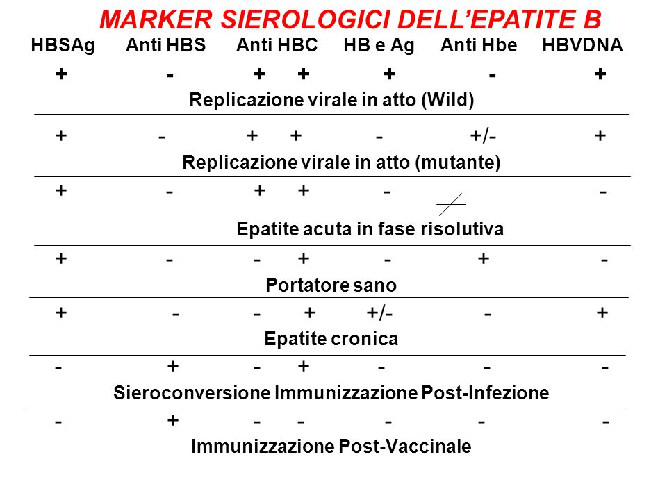 + - + + - +/- + Replicazione virale in atto (mutante)