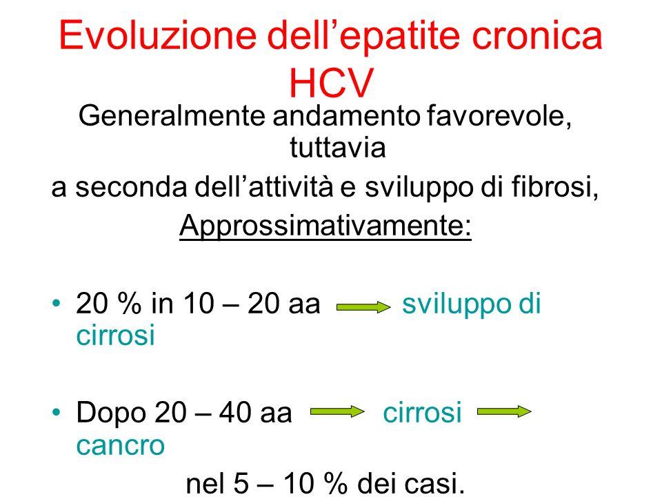 Evoluzione dell'epatite cronica HCV