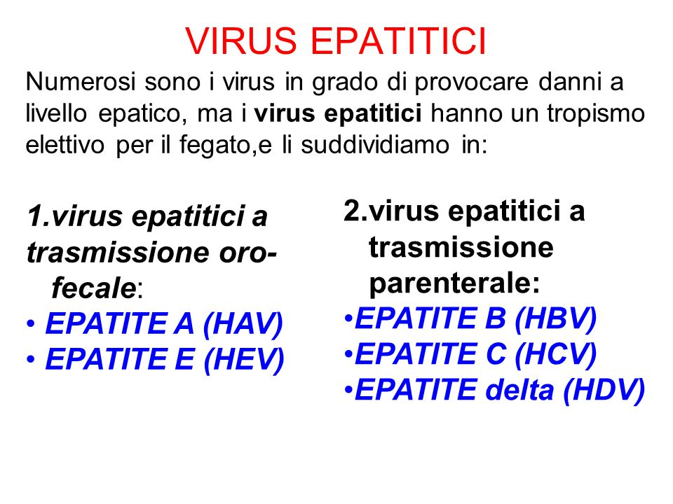 VIRUS EPATITICI 2.virus epatitici a trasmissione parenterale: