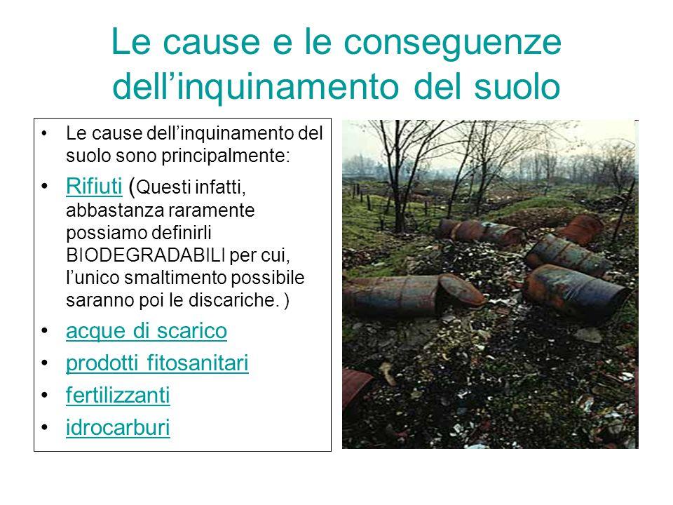 Le cause e le conseguenze dell'inquinamento del suolo