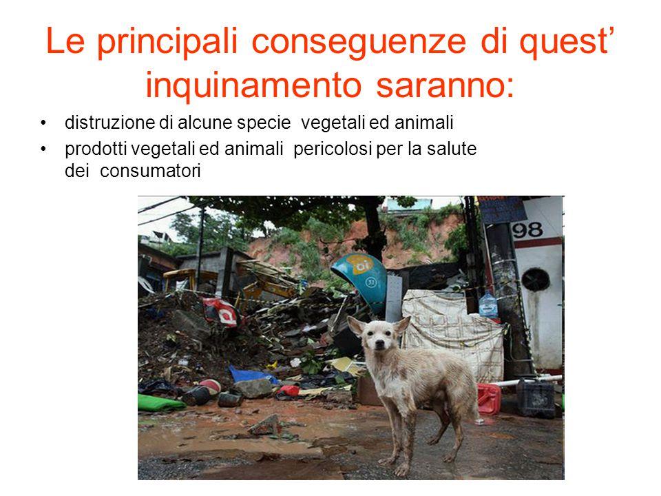 Le principali conseguenze di quest' inquinamento saranno: