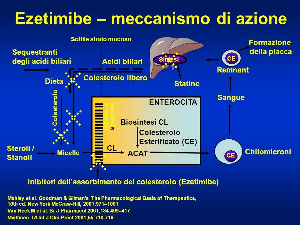Ezetimibe – meccanismo di azione