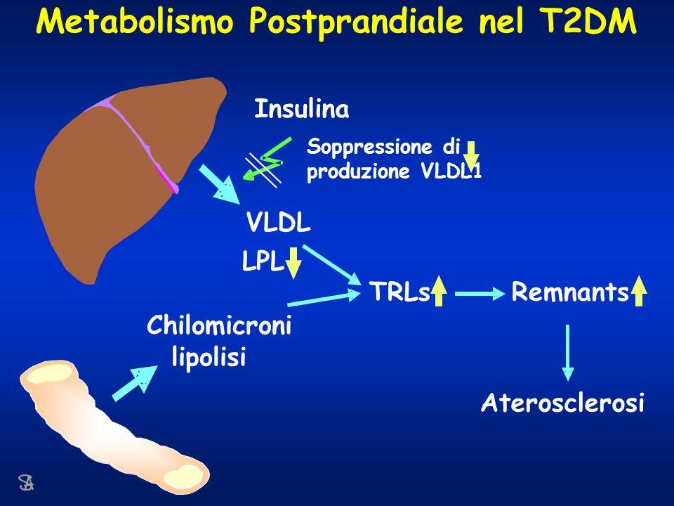 Metabolismo Postprandiale nel T2DM