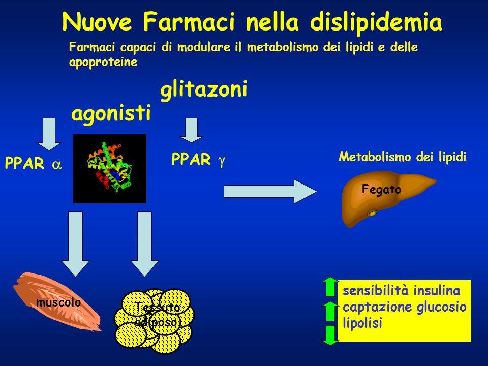 Nuove Farmaci nella dislipidemia