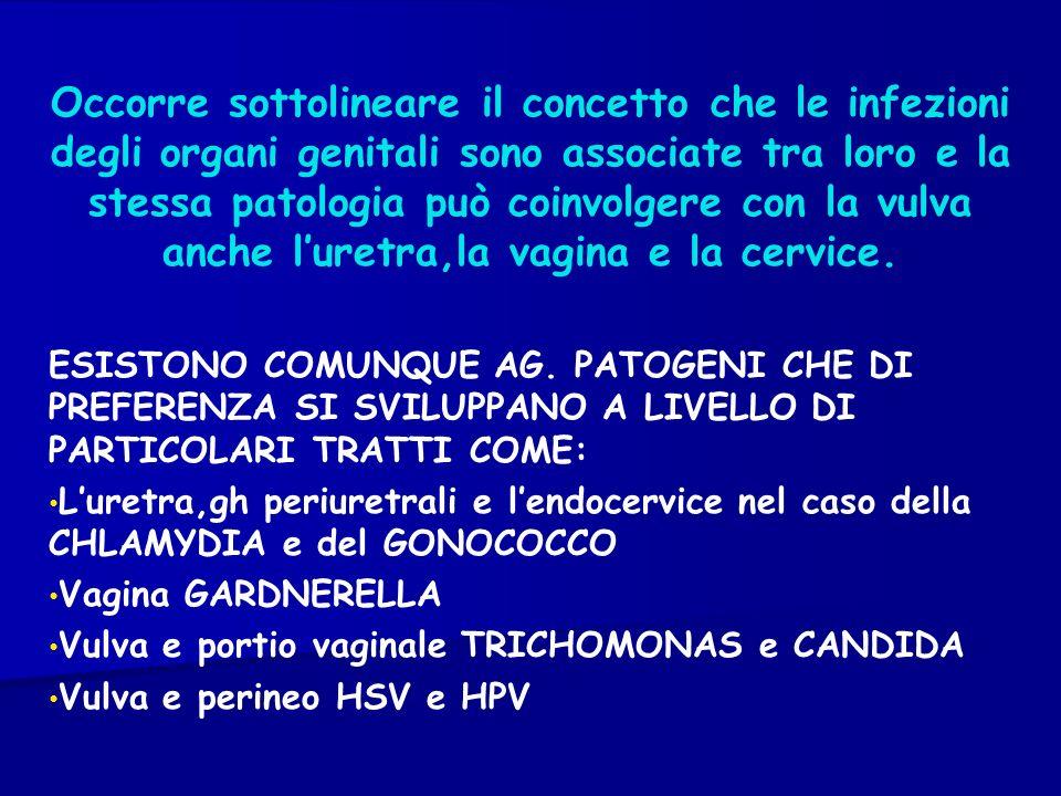 Occorre sottolineare il concetto che le infezioni degli organi genitali sono associate tra loro e la stessa patologia può coinvolgere con la vulva anche l'uretra,la vagina e la cervice.