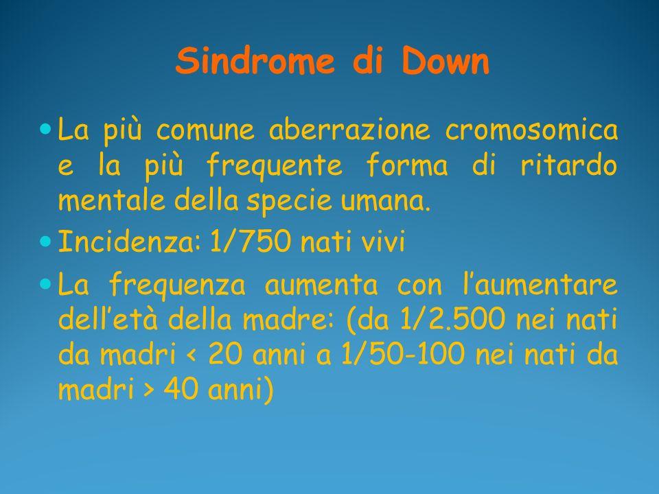 Sindrome di Down La più comune aberrazione cromosomica e la più frequente forma di ritardo mentale della specie umana.