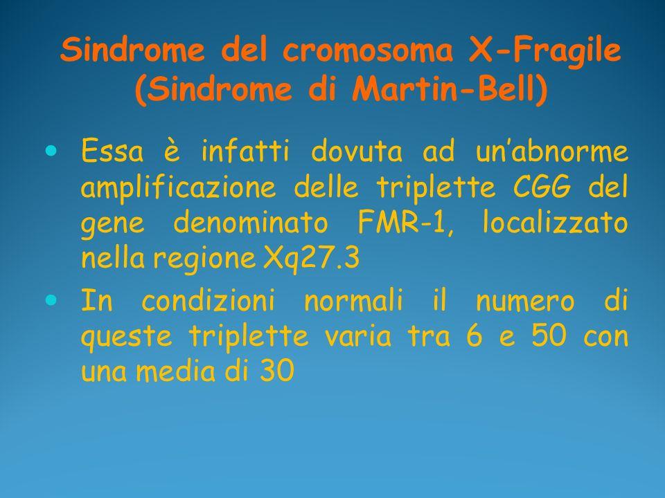Sindrome del cromosoma X-Fragile (Sindrome di Martin-Bell)
