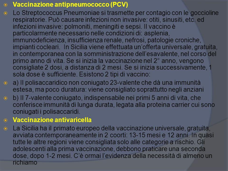 Vaccinazione antipneumococco (PCV)