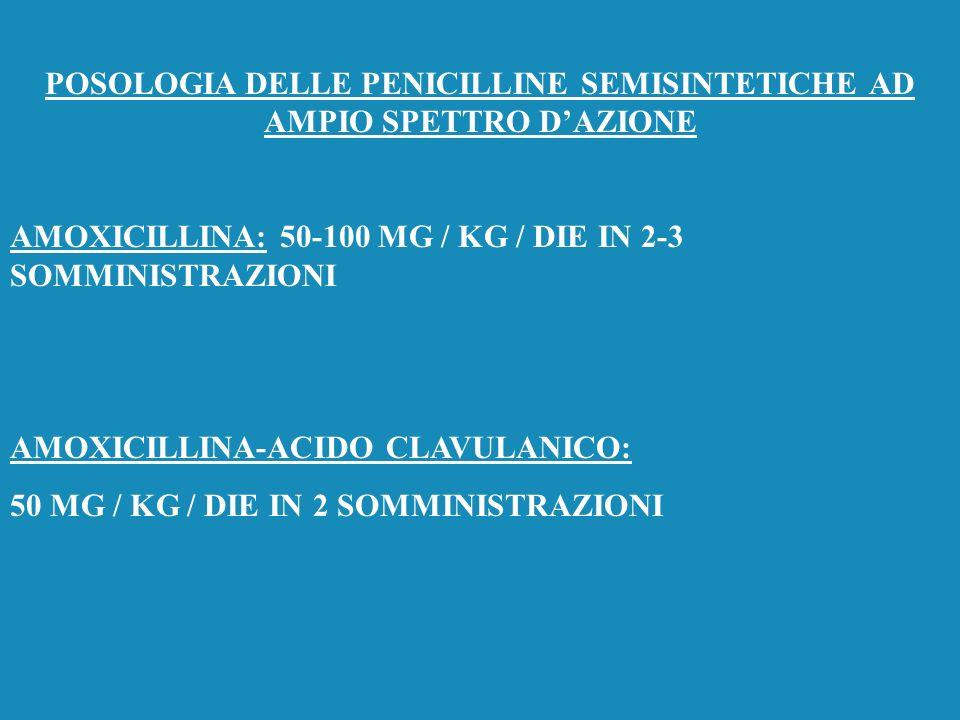 POSOLOGIA DELLE PENICILLINE SEMISINTETICHE AD AMPIO SPETTRO D'AZIONE