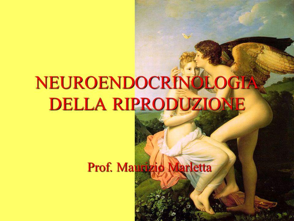 NEUROENDOCRINOLOGIA DELLA RIPRODUZIONE